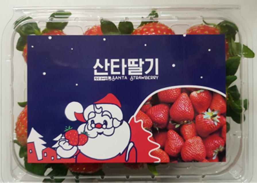 딸기2.JPG